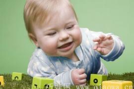 有助于宝宝智力潜能开发的10种小玩具